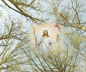 Župnikova uskrsna poruka i čestitka